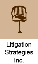 Litigation Strategies